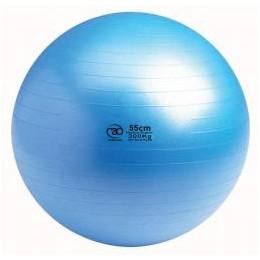 Swiss ball 300 kg Anti-Burst 55 cm