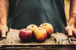 5 types d'aliments à mettre au menu de votre régime