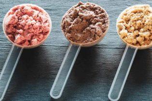 Comment choisir sa protéine en poudre et quelle protéine choisir?