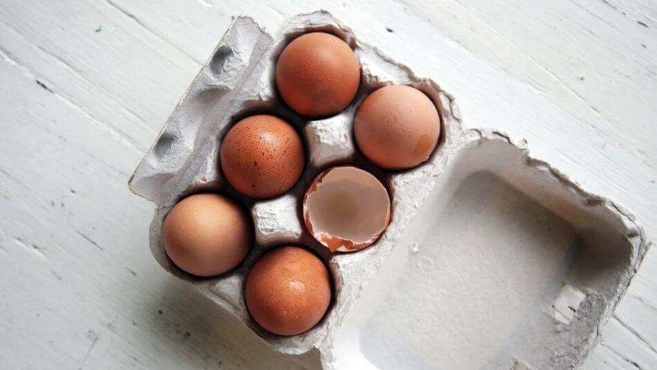 czy białka są przydatne dla zdrowia?