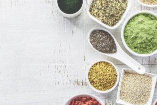 Quelle est la meilleure protéine végétale en poudre?
