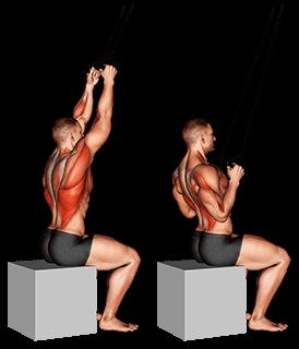 traction verticale avec élastique