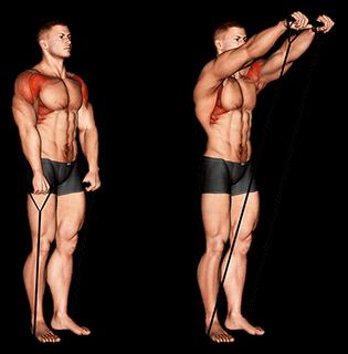 Elévations frontales avec élastique
