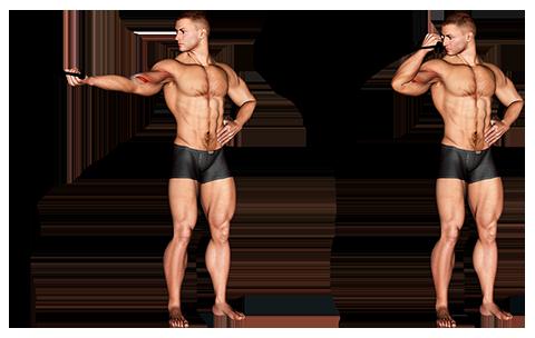 Biceps jednoramienny zwijający się z gumką