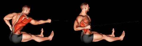 Tirage horizontal à un bras avec élastique