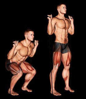 Squat avec élastique