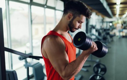 Principes de base pour prendre du muscle