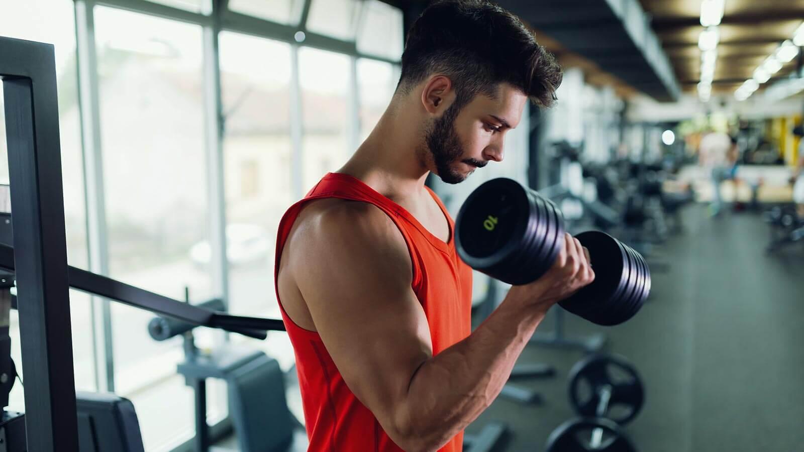 Principes de base pour la prise de muscle