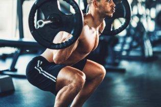 Le squat