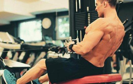 Tirage horizontal ou rowing assis