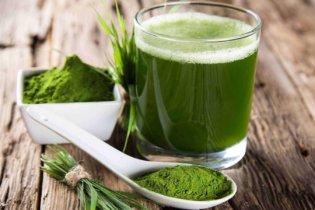 Protéine végétale, définition et utilité