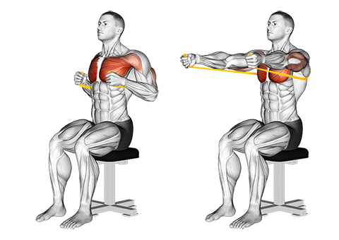 Resistance band seated chest press
