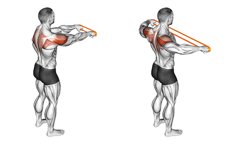 Resistance band rear fly