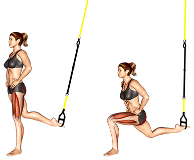 Suspender single leg split squat
